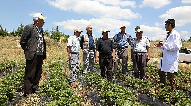 Tarımsal Eğitimlerle Çiftçiye Katkı