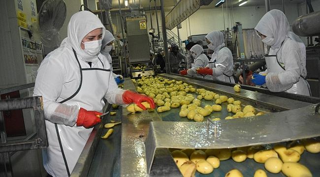 Konuk: Konya patatesin de üretim üssü oldu