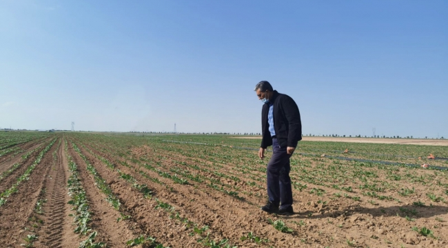 Konya Şeker'den 28 milyon TL'lik mazot avansı